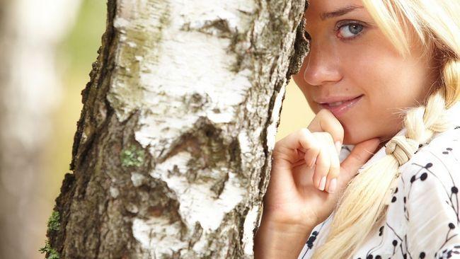 breza SAP kose